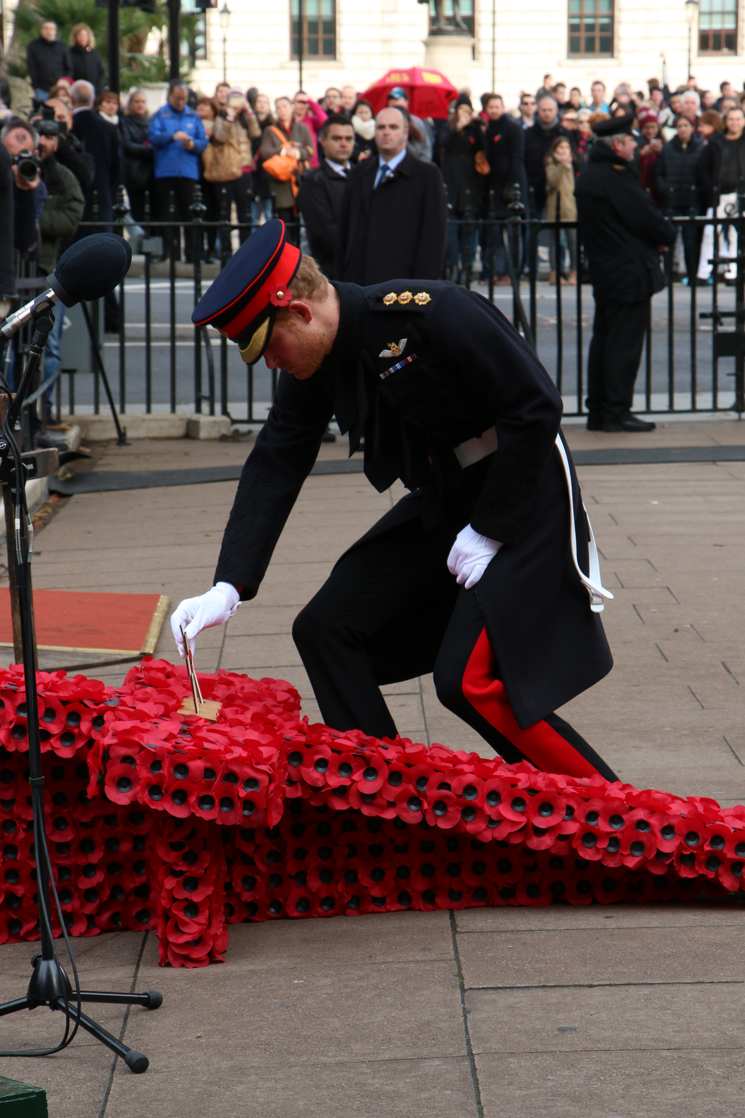 Image for Prince Harry Opens 89thField Of Remembrance At Westminster Abbey