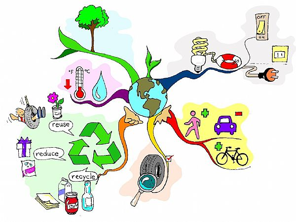 Image for Mind Map Mastery